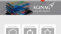 Aginag Website